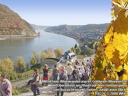 Mittelrhein-Weinwandertag bei Oberwesel am Rhein